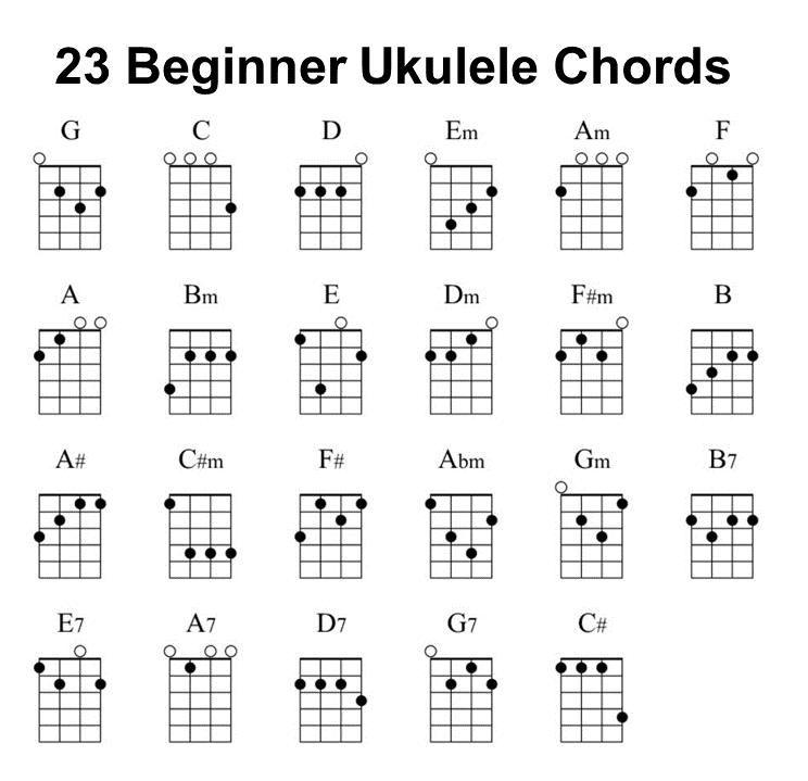 23 Ukulele Chords | Ukulele songs, Ukulele songs beginner ...