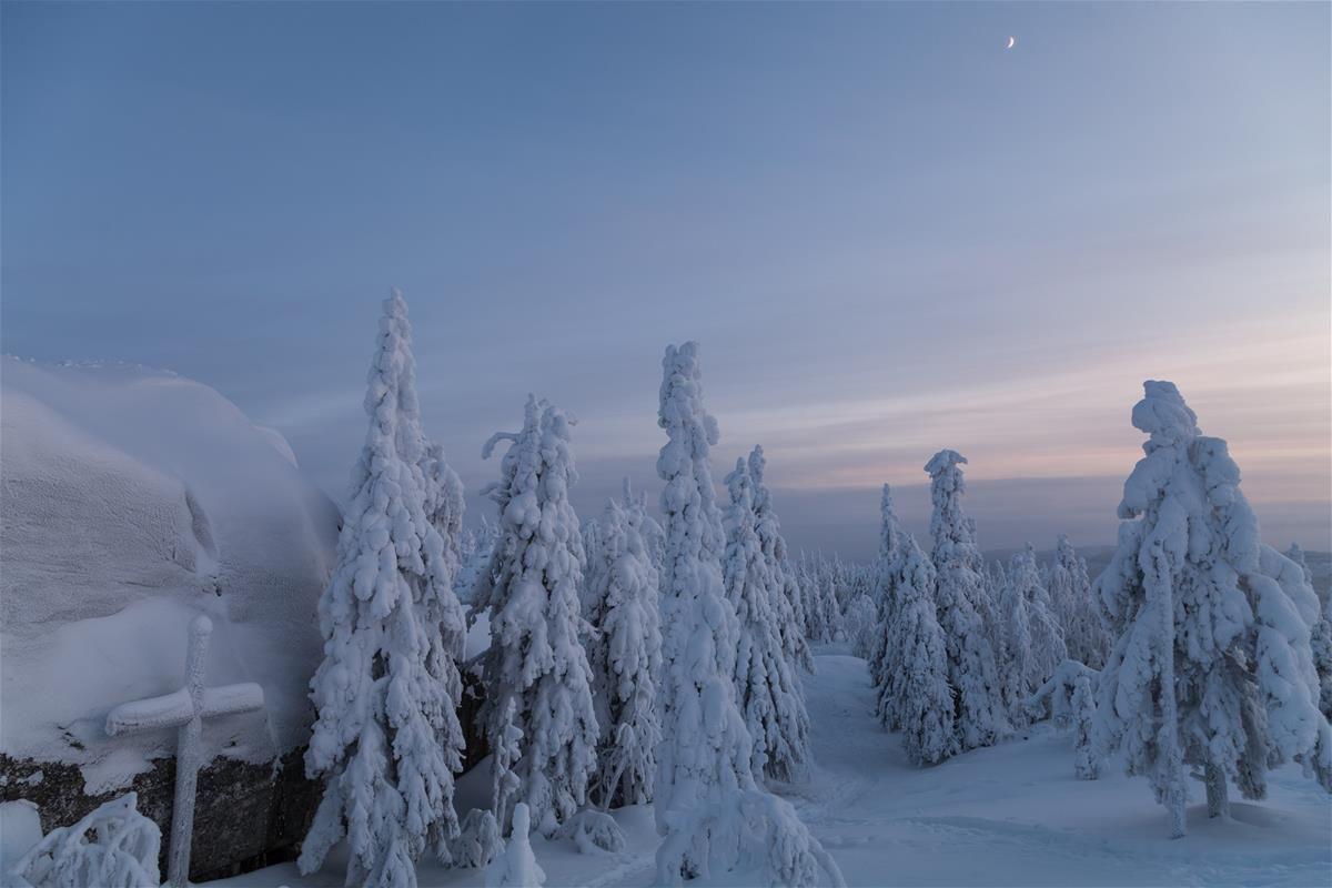 loader.aspx (1200×800) > Koli Finland