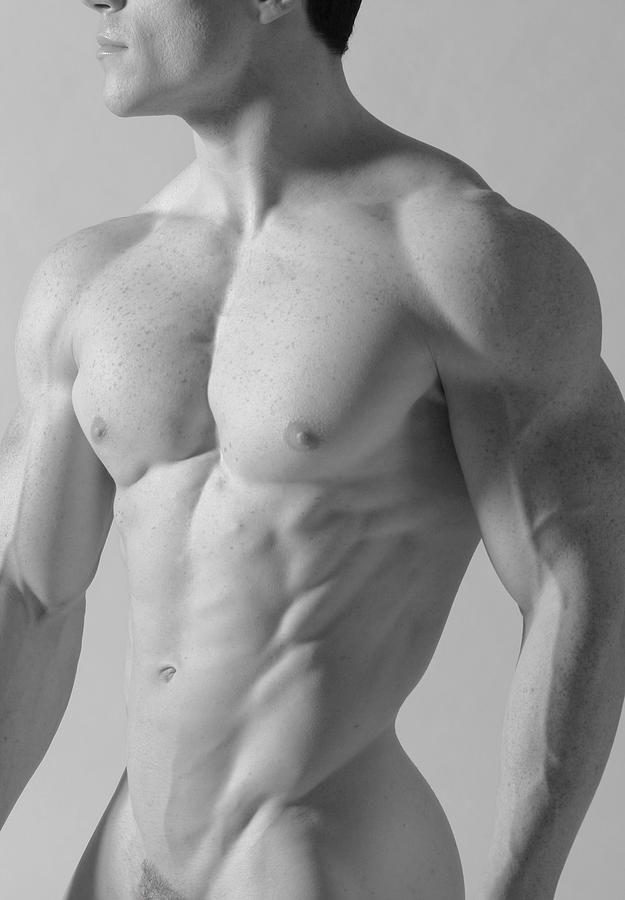 male torso | Anatomy photo reference | Pinterest | Male torso ...