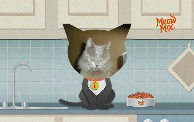 My cat singing the Meow Mix jingle. Create your own video with the simple app at meowmixjingle.com and you could win $10,000*! *See official rules.