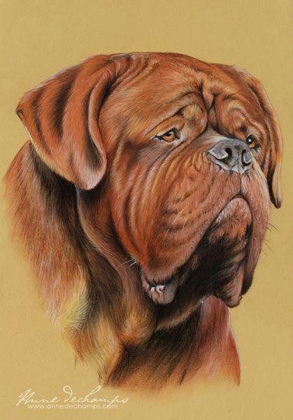 Balrog Dogue De Bordeaux Bordeaux Dog Bulldog Art Dog Friends