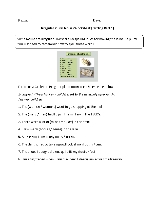Circling Irregular Plural Noun Worksheet | Worksheets | Pinterest