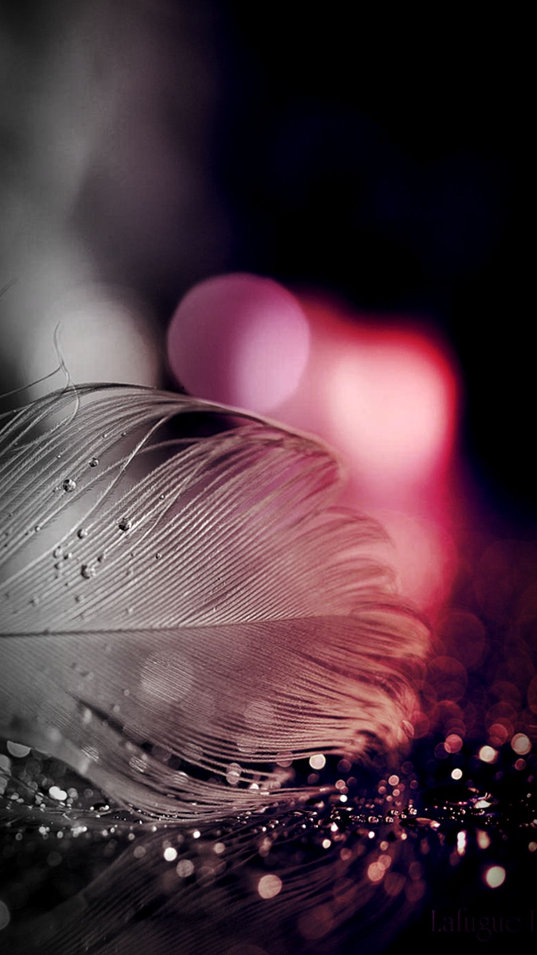 Http Www Vactualpapers Com Gallery Sparkling Feather Hd Mobile Wallpaper Feather Wallpaper Sparkle Wallpaper Mobile Wallpaper