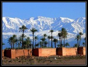 Zo bijzonder, het Atlas gebergte met de sneeuw, de palmen op de voorgrond, Marrakesh moet je gewoon eens gezien hebben.
