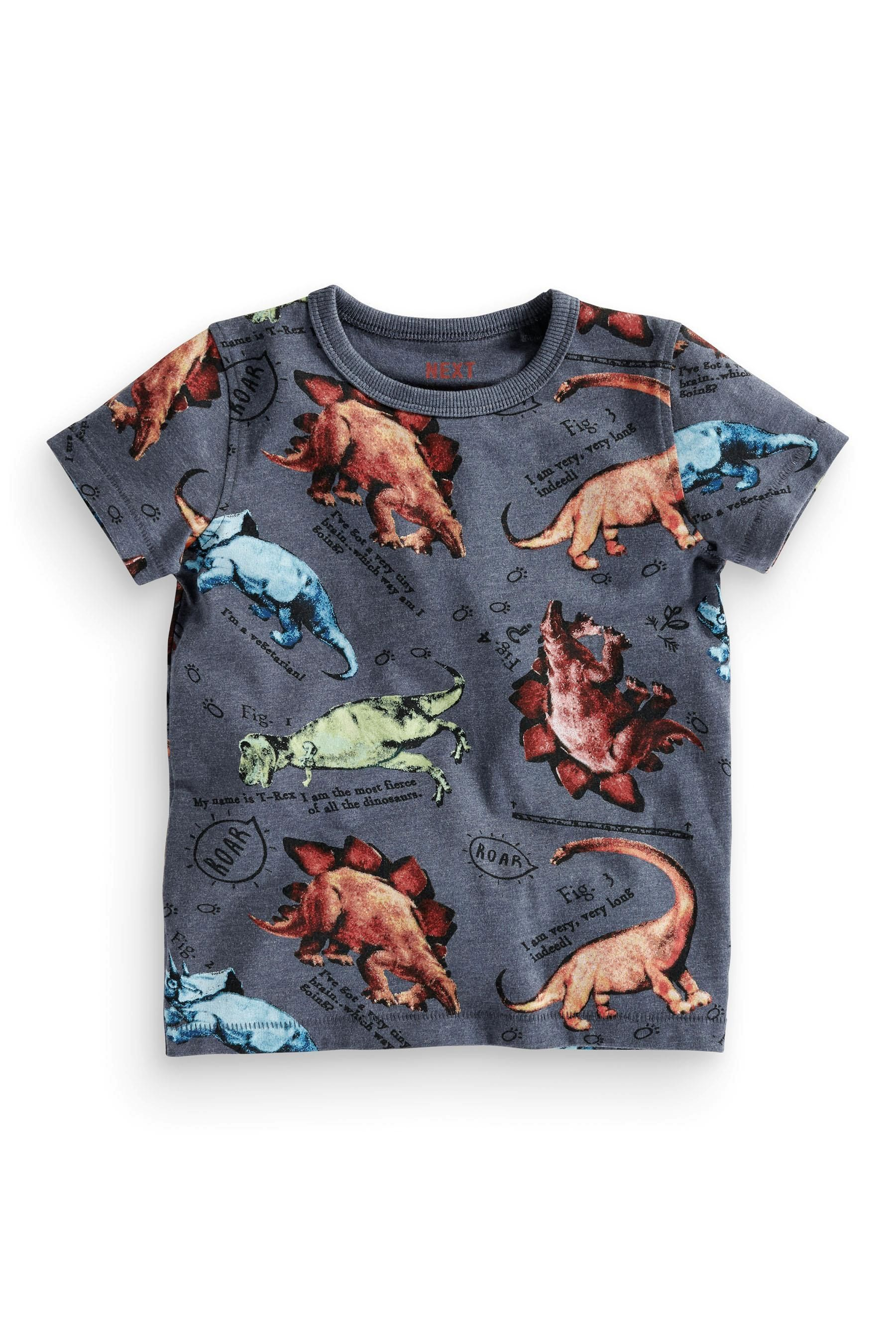 6093c0bd5bbc60 Buy All Over Print Dino T-Shirt (3mths-6yrs) from the Next UK online shop