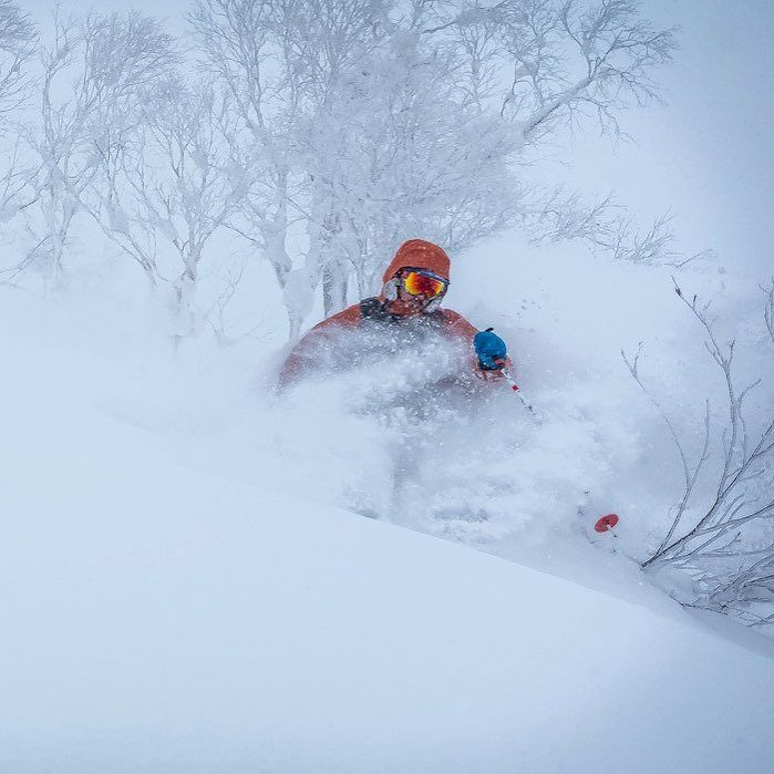 Does it snow in Japan? @funkygrussell checking the depth at #SASSjapan. You can find out for yourself with us this  #japanuary go to @tripinquirysgt and talk to us.  #jaPOW #powder #skiing  PC: @lucasmoorephoto