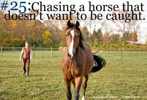 Cowgirl problems ALWAYS!ALWAYS!ALWAYS!!!>:(