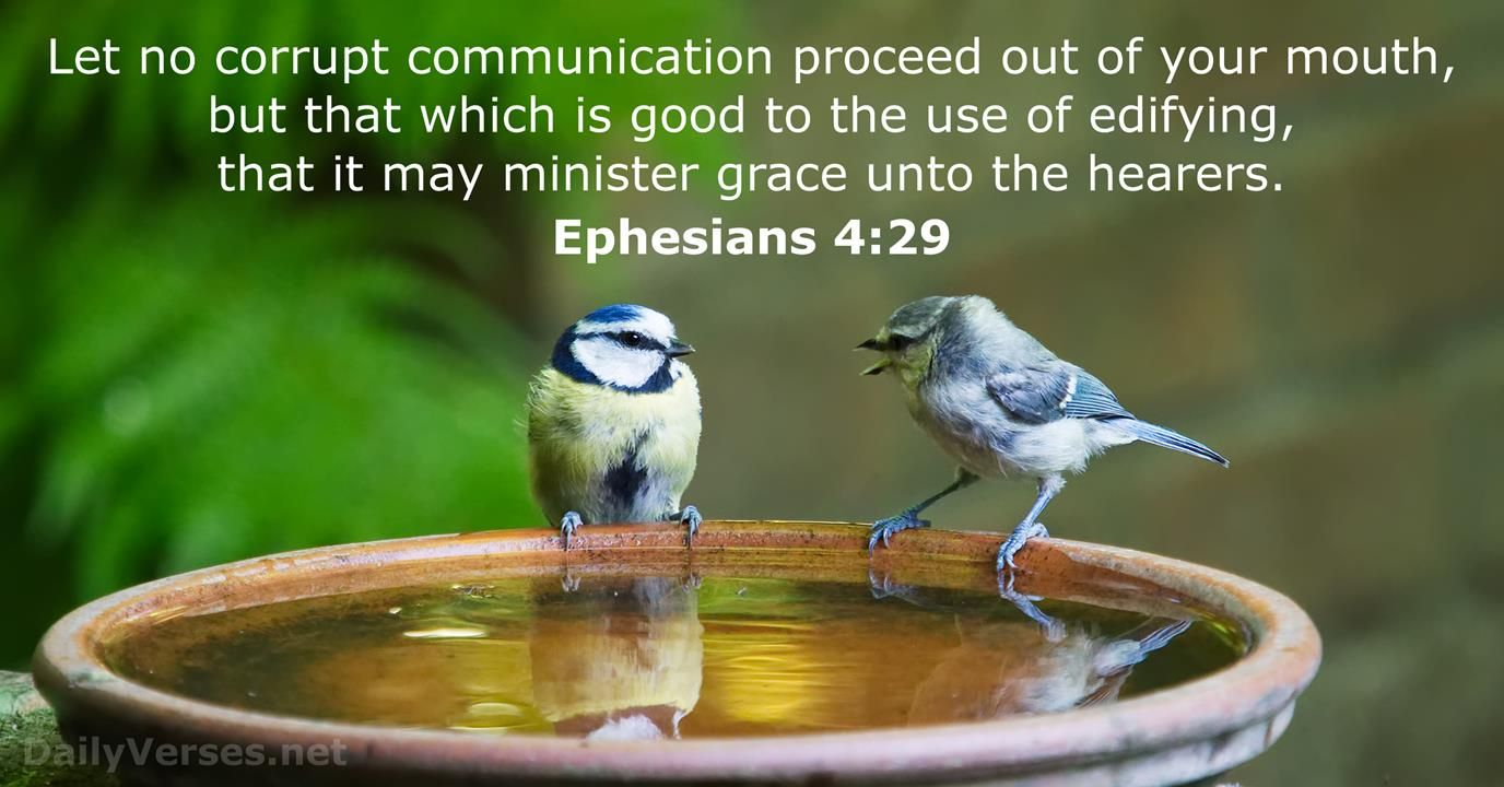 Let no corrupt communication proceed out of your mouth, but that which is good to the use of edifying, that it may  mi…   How to attract birds, Wild birds, Bird bath