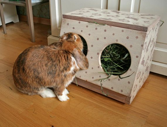 Wooden Bunny Hay Rack With Two Holes This Rabbit Is Made