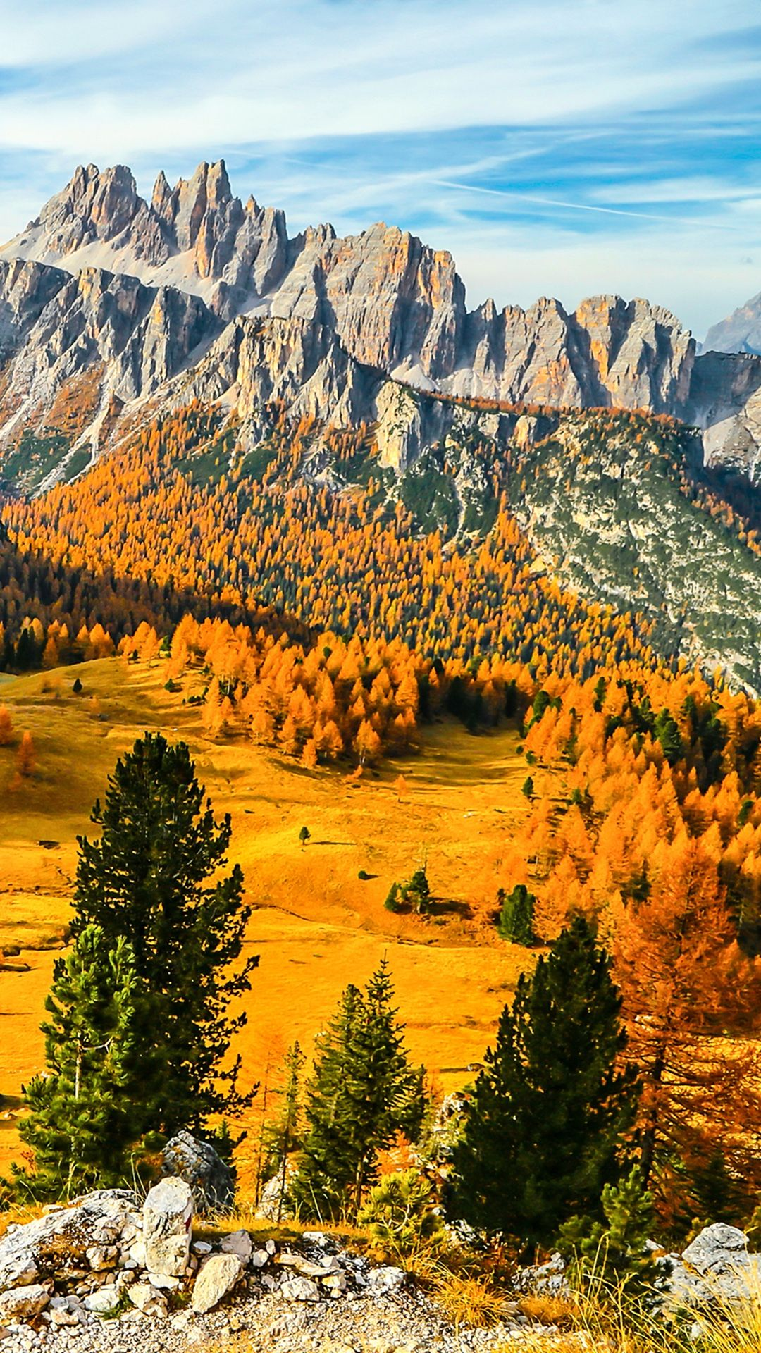 Gold Autumn Wallpaper For Your Iphone X From Everpix In 2019