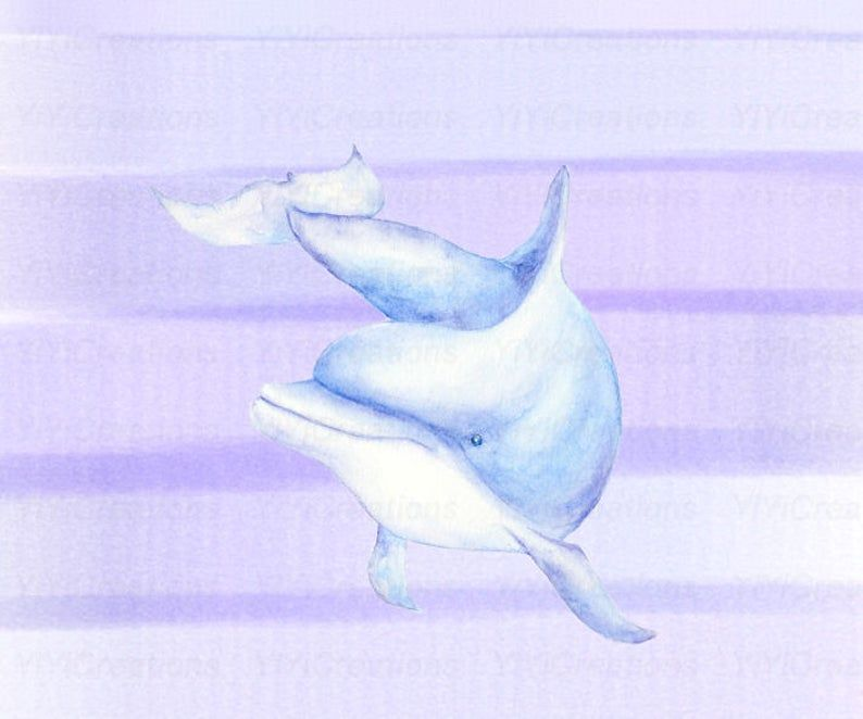 Watercolor Hand Painted Sea Creature Dolphins Clipart Mom And Baby Printable Vibrant Dolphin Family Purple Background Blue Splash Png Dolphin Clipart Dolphin Images Purple Backgrounds