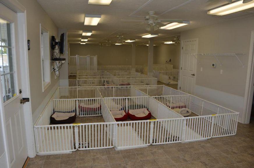 plastic indoor large dog crates | Puppy Playpens | Pinterest ...