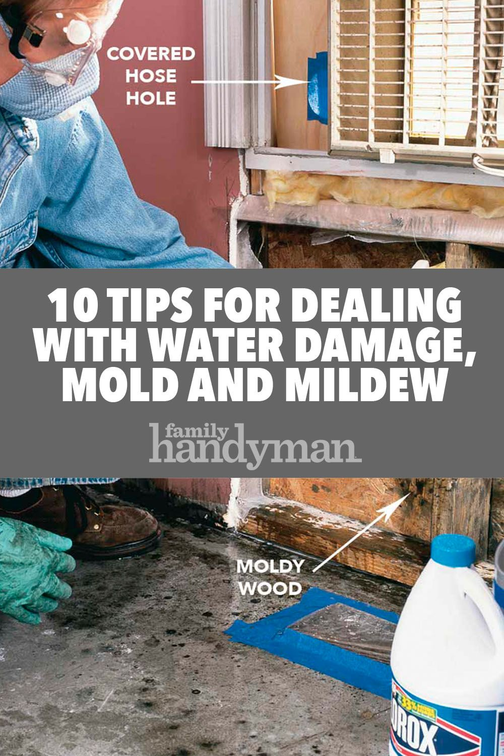 10 tips for dealing with water damage, mold and mildew | diy
