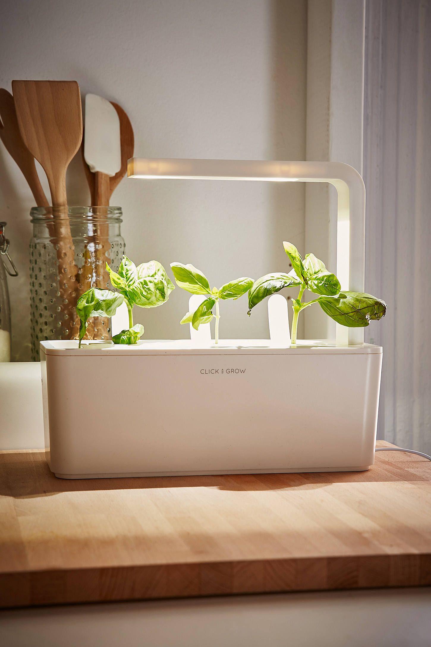 Slide View 1 Click Grow Smart Herb Garden Starter Kit Herb