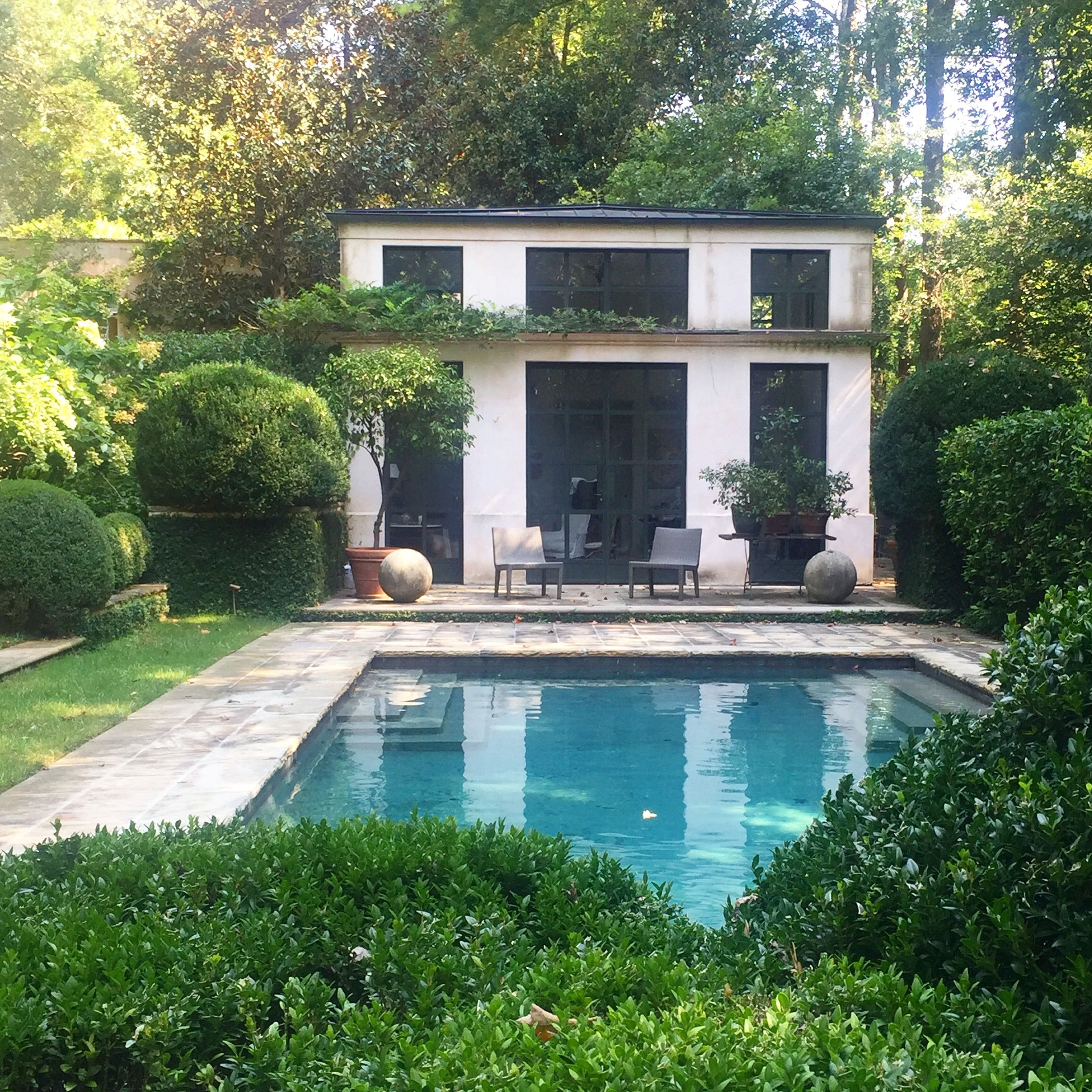 A Lush Pool Setting With Boxwood, Fig Vine, Wisteria And