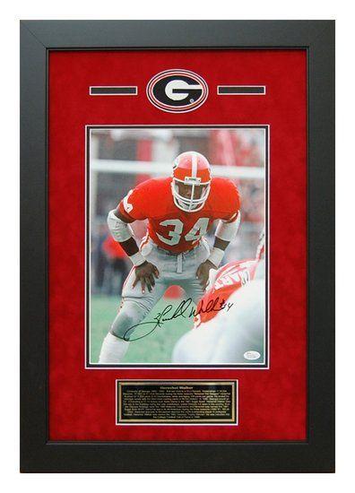 Herschel Walker Autographed 11x14 - Georgia Bulldogs Backfield Picture Framed #HerschelWalker #UGA #GeorgiaBulldogs #Autographs
