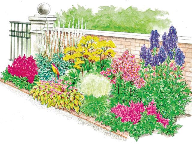 Halbschatten Pflanzen Wenig Licht Ist Mehr Gartenflora Halbschatten Pflanzen Vorgarten Bepflanzen Schattenpflanzen Garten