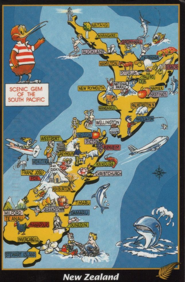 Pictorial map of New Zealand Maps Pinterest Pictorial maps
