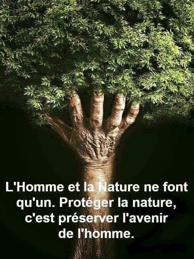 La Nature Et L Homme Citation Dictons Et Citations