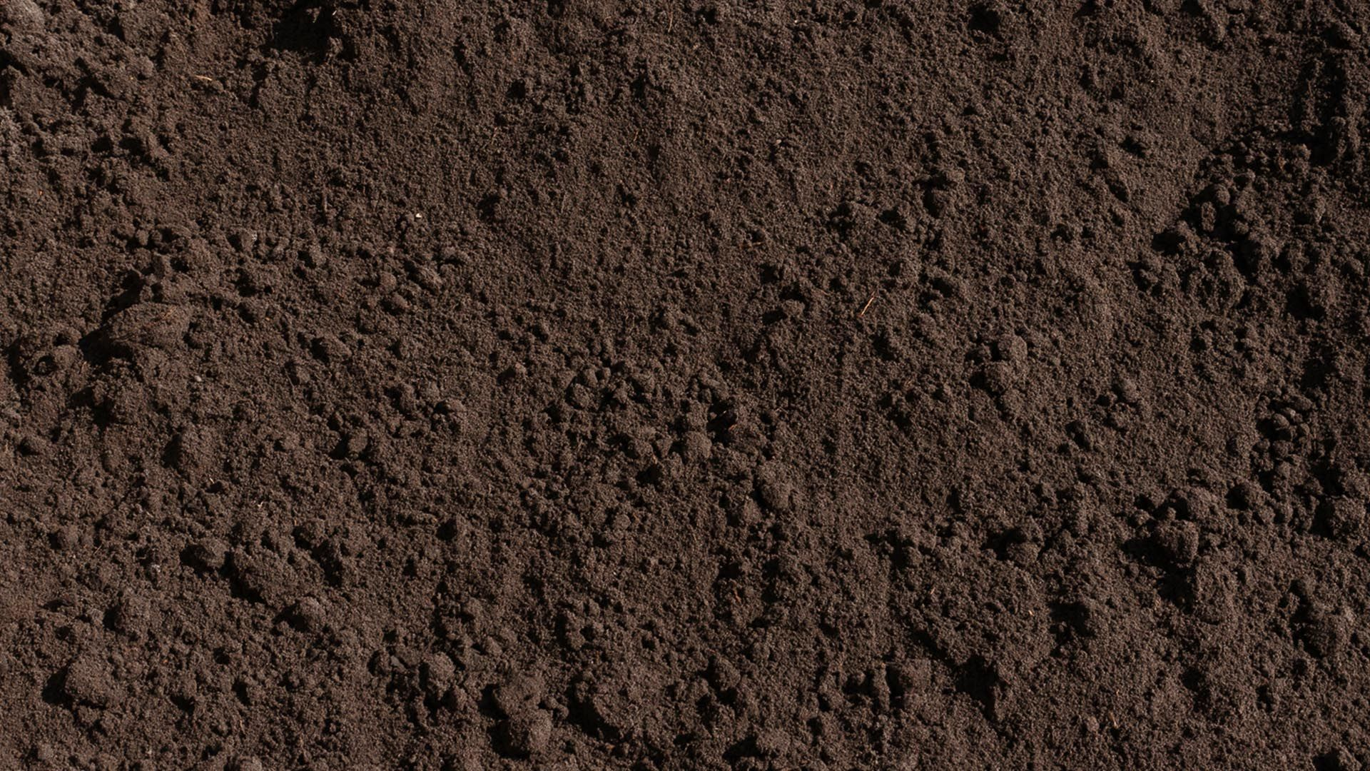 Amended top soil rocky mountain compost rocks earth for Dirt and soil
