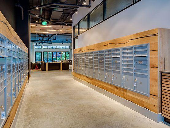 seattle interior design modera capitol hill robin chell design