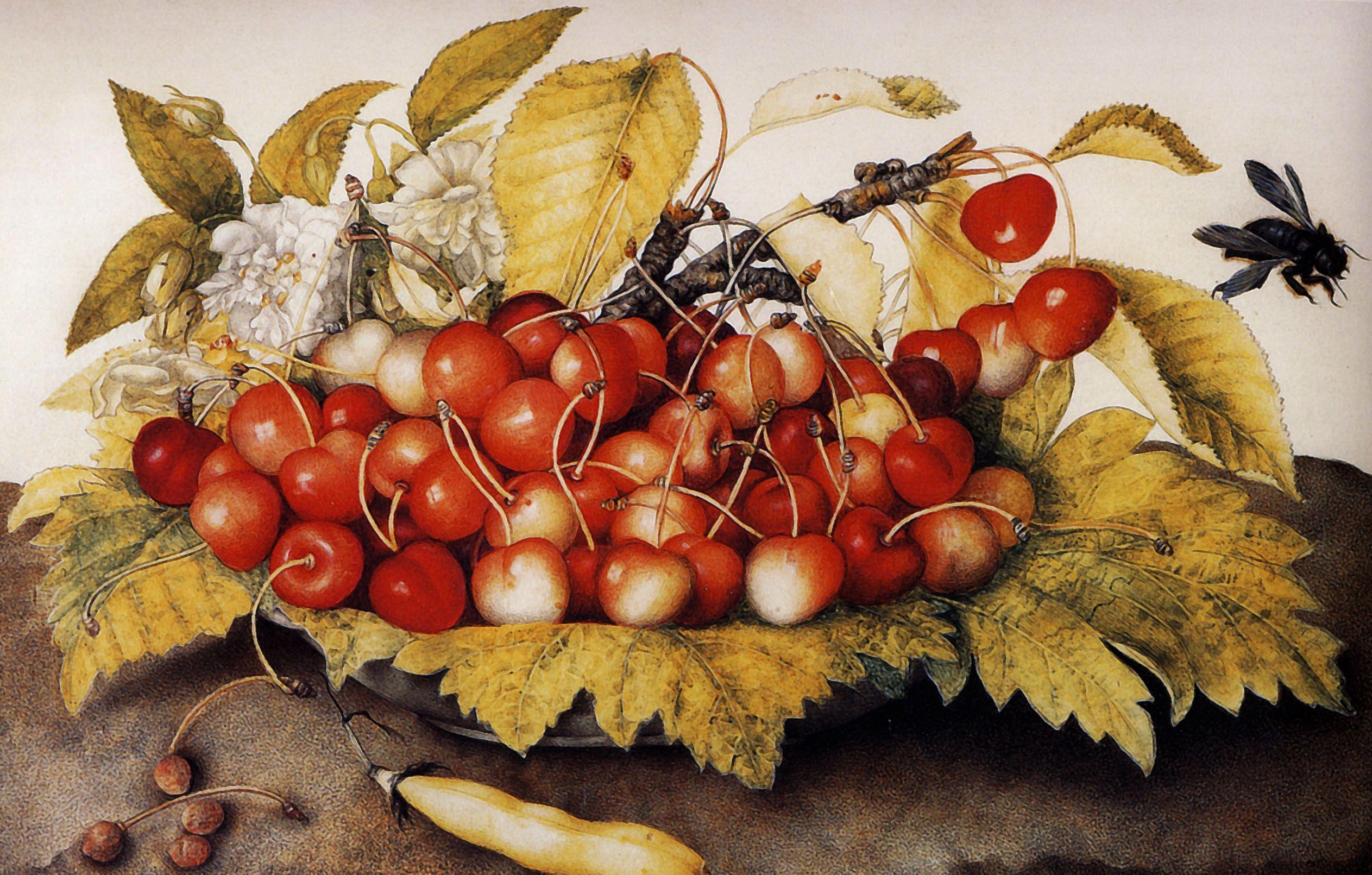 Giovanna garzoni art challenge still life still life art