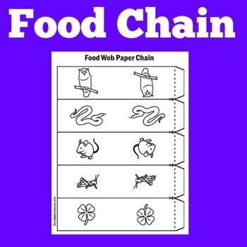 Food Chain Term paper