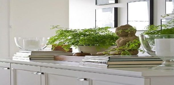 House with Good Feng Shui Using Fresh Vibrant Green Plants Feng