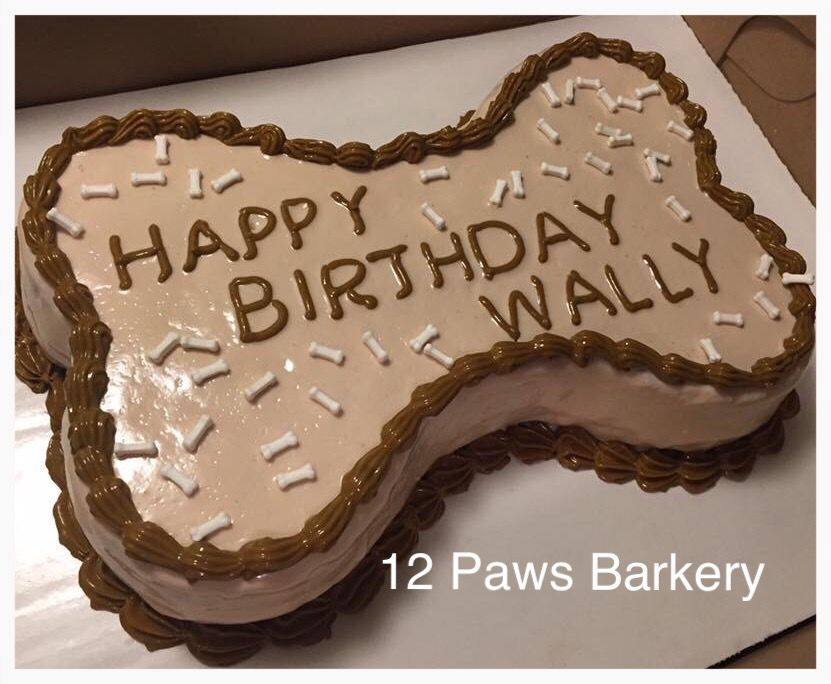 Dog Birthday Cake Decorated Using Fidos Frosting Baked By 12 Paws