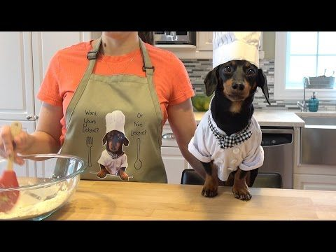 Every Item Of The Crusoe Store In 60 Seconds Crusoe The