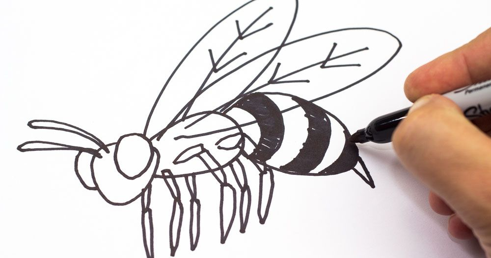 How To Draw A Bee Art For Kids Hub