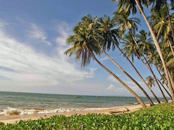 Mui Ne (Phat Thiet, Vietnam).  http://www.vietnamitasenmadrid.com/mui-ne.html