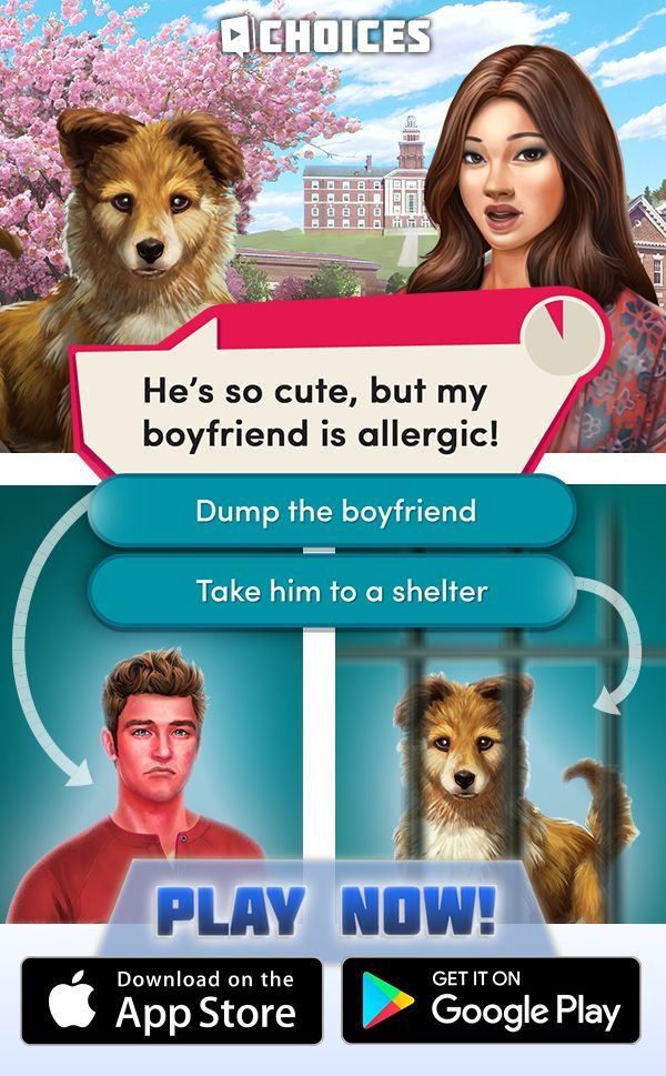Play Now And Make Your Choice I M In Love With This Game I Literally Live For Wednesda Cutest Puppy Ever Episode Choose Your Story Funny Animal Pictures