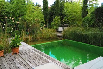 Schwimmen Im Garten Kleiner Schwimmteich Mit Holzdeck Hier
