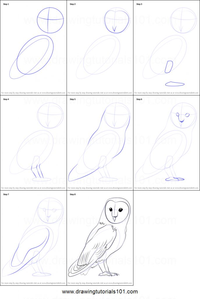 Owl Drawing Step By Step How To Draw A Barn Owl Printable Step Step
