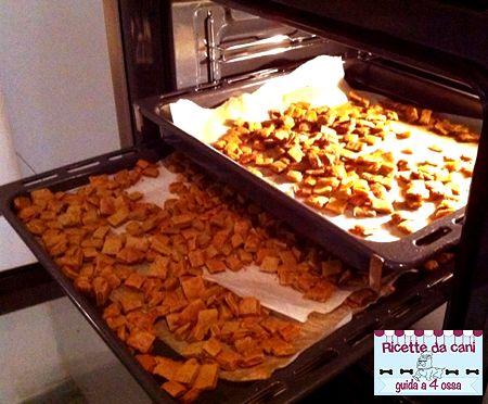 Crocchette per cani al salmonte fatte in casa cucina - Cucina casalinga per cani dosi ...