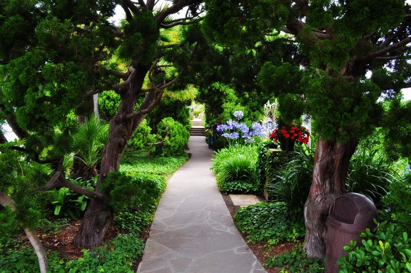 meditation gardens images | Self Realization Fellowship Meditation ...