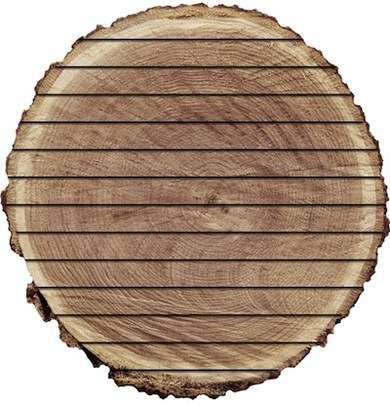 11 Things To Know Before Visiting The Lumber Yard Easy