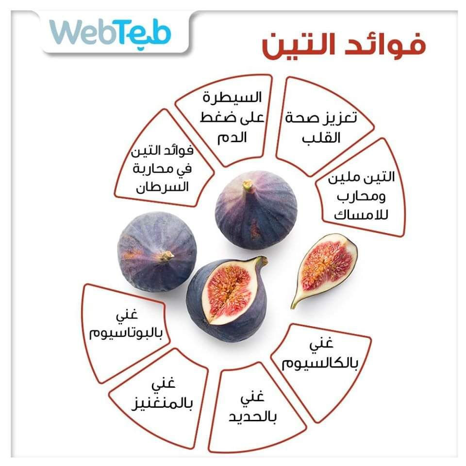 Pin By Saja Khalid On معلومات صحية Health Facts Food Health Facts Healthy Smoothies