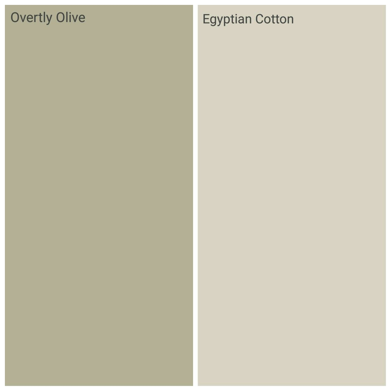 Dulux overtly olive and egyptian cotton, kichen family room! | Идеи ...