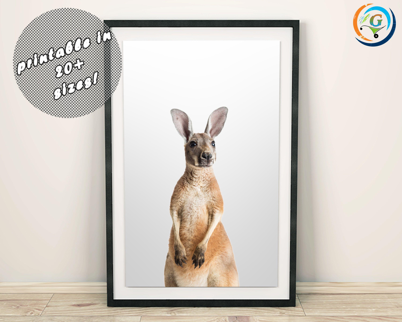 Kangaroo Print Kangaroo Art Australian Animals Cute Baby Animals Nursery Baby Animal Prints Baby Animal P Baby Animal Nursery Baby Animal Prints Animal Posters