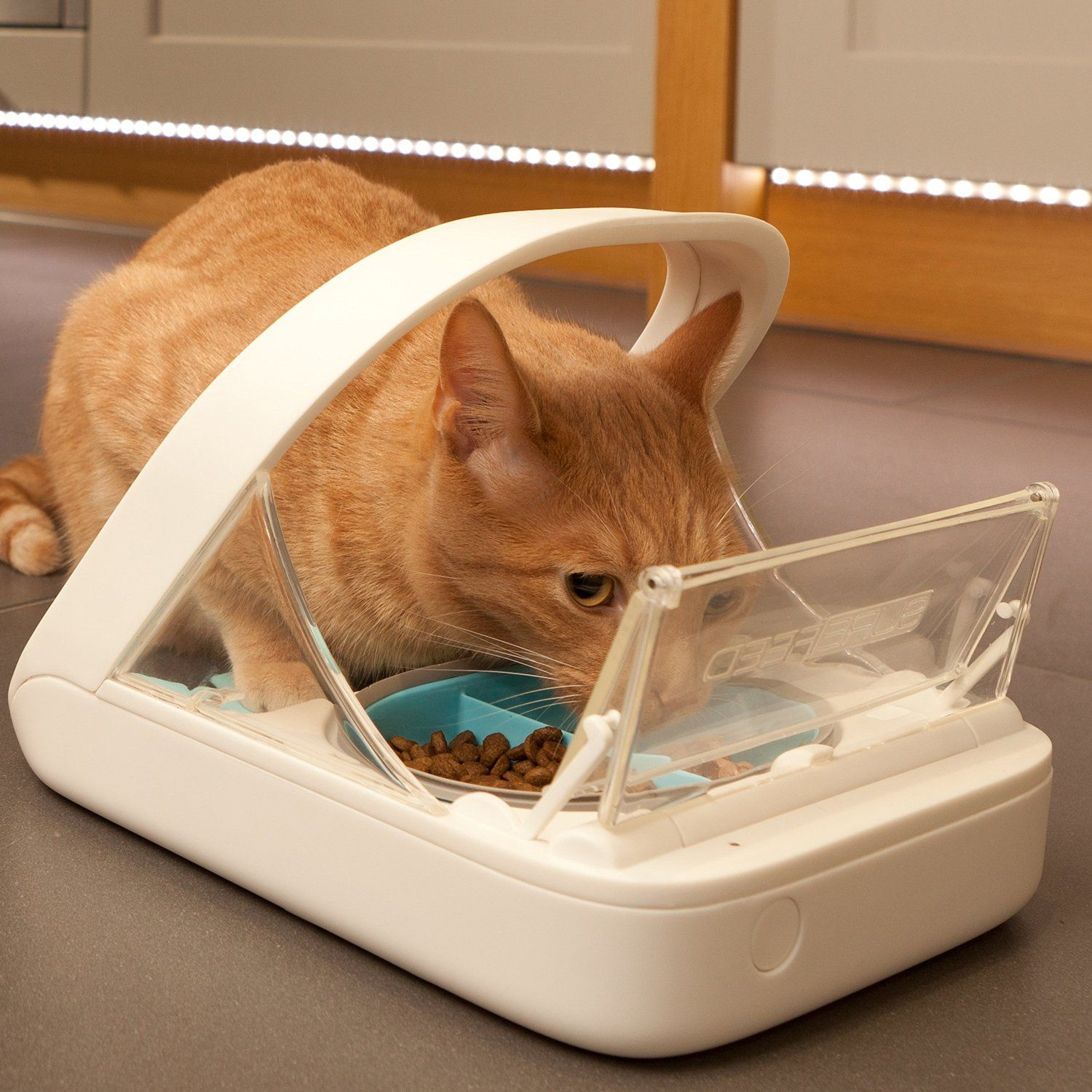 How cool is this!? SureFeed Microchip Pet Feeder BUY NOW