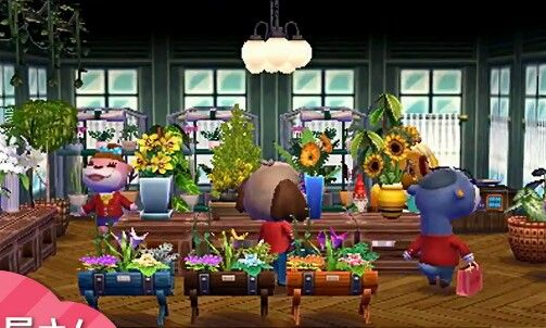 Animal crossing happy home designer also best imal images in rh pinterest