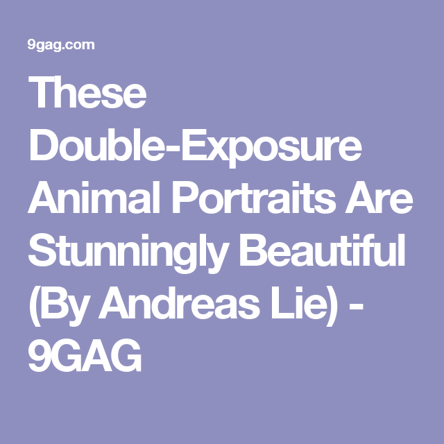 These Double-Exposure Animal Portraits Are Stunningly Beautiful (By Andreas Lie) - 9GAG