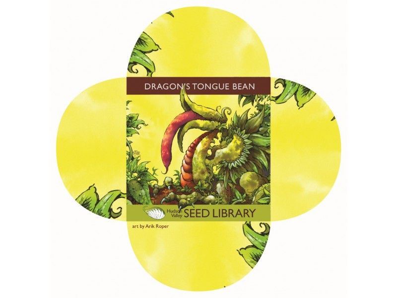 Dragon S Tongue Bean Art Pack By Arik Roper Dragon Tongue Beans Seeds Library Art
