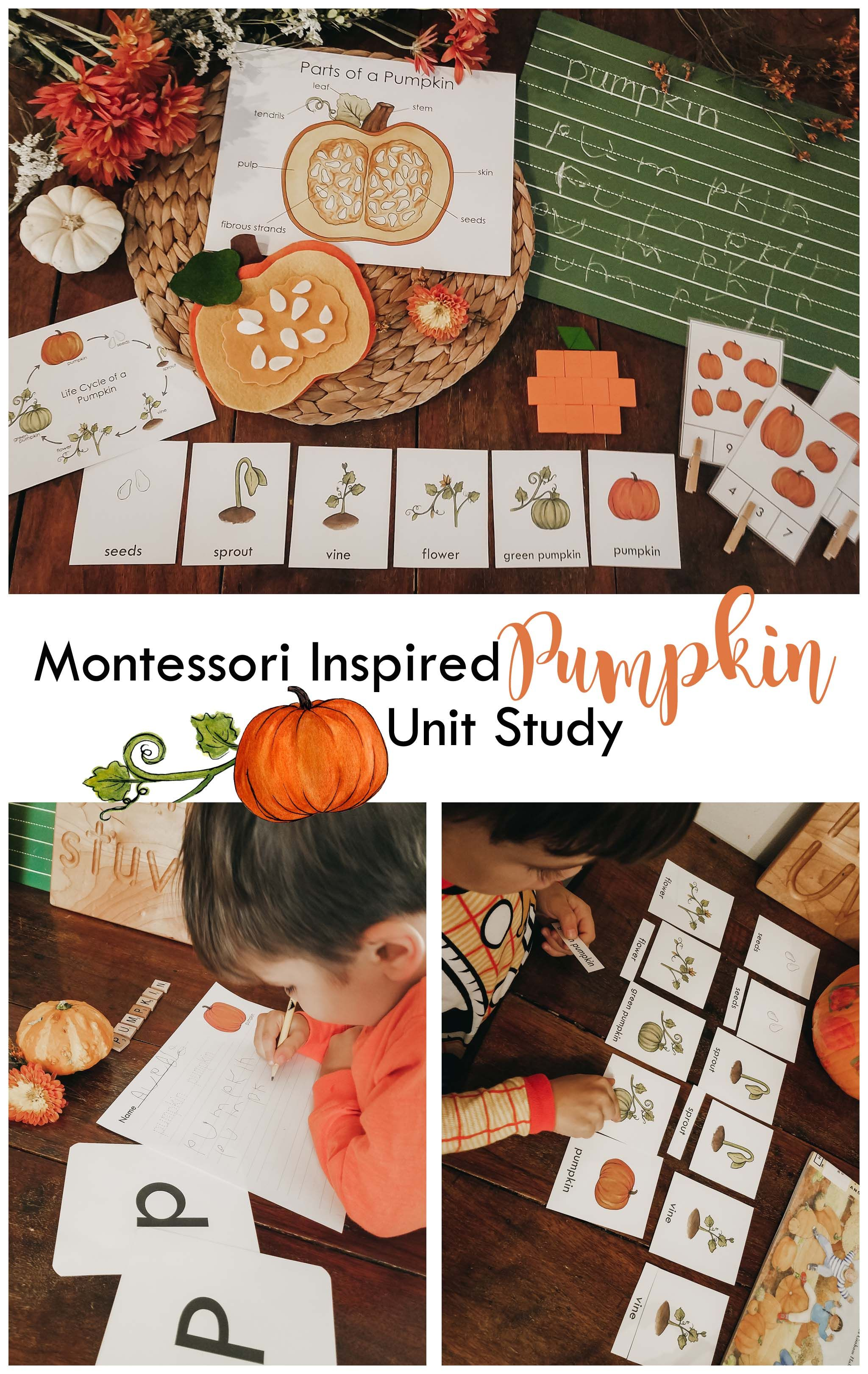 Pumpkin Invitation Bundle Unit Study