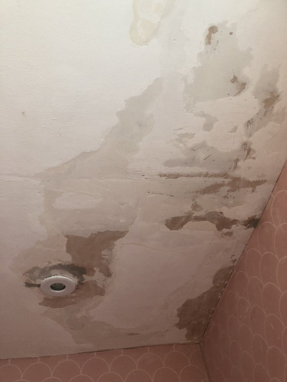 How To Repair A Peeling Bathroom Wall Or Ceiling In 2020 Bathroom Wall Ceiling Peeling Wall