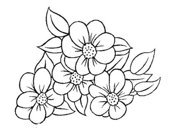 Riscos Flores Para Bordar Em Ponto Russo Con Imagenes Paginas