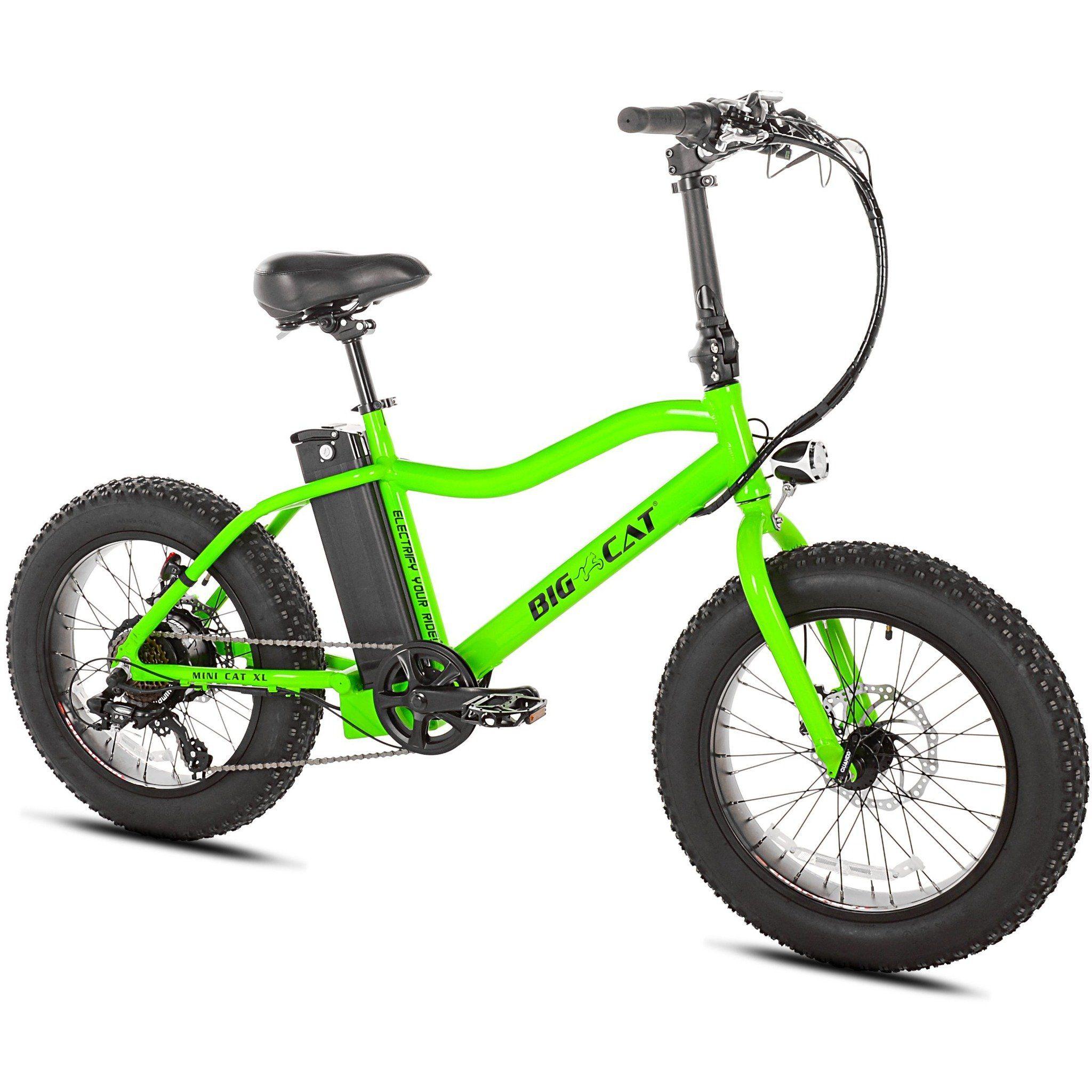 BIG CAT® Mini Cat Electric Bike Limited Run Best
