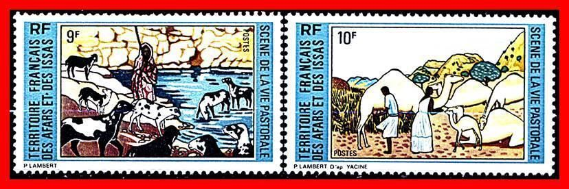 Afars Issas 1973 Domestic Animals Sc 362 63 Mnh Cv 4 25 Sheep Camels Food Stamps Europe France Colonies Ebay Sheep Animals Camels